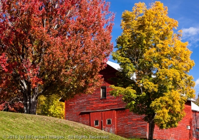 New Hampshire Barn, Errol, New Hampshire