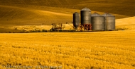 Farm and Silos, The Palouse, Washington
