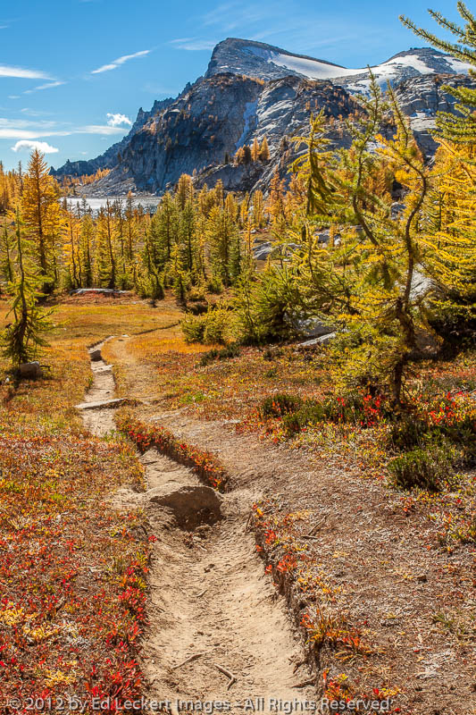 hike of the larches  alpine lakes wilderness  washington