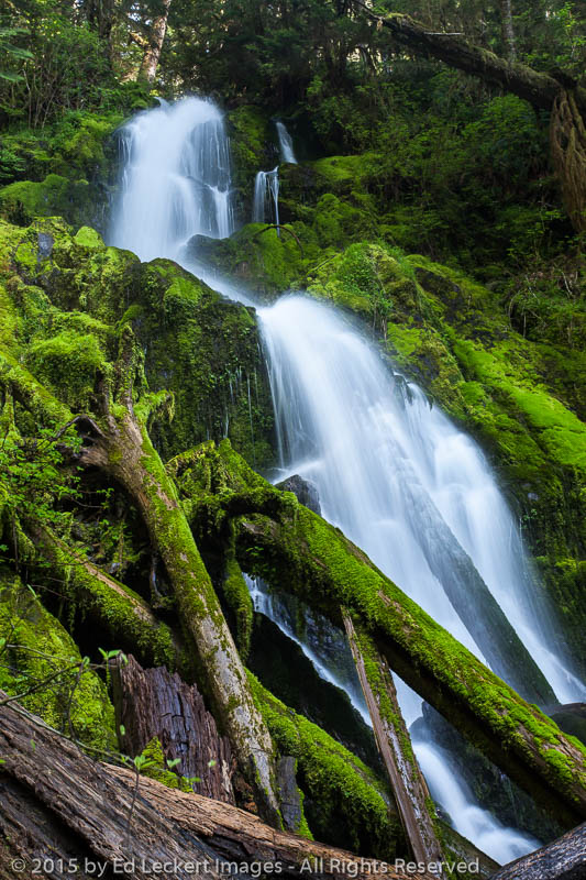 mineral creek falls  olympic national park  washington