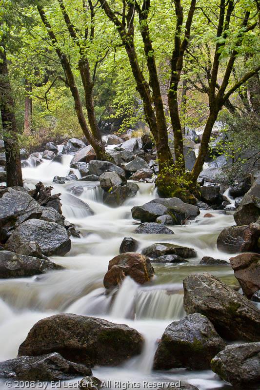 Bridalveil Creek at Dusk, Yosemite National Park, California