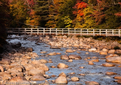 Fall Color On The Kanc, Lincoln, New Hampshire