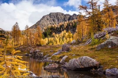 Larch Lake Tarn, Alpine Lakes Wilderness, Washington