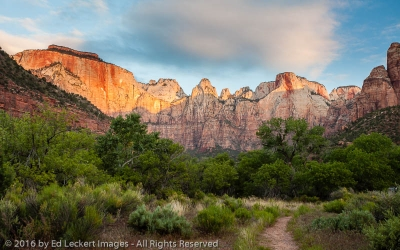 Morning Walk in Zion, Zion National Park, Utah