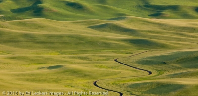 Stream and Farmland, The Palouse, Washington