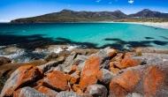 Lichen This Beach, Freycinet National Park, Tasmania, Australia