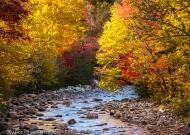 Maine Stream, Byron, Maine