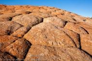 Sandstone Tiles, Yant Flat, Utah