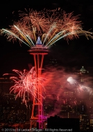 Space Needle Fireworks, Seattle, Washington