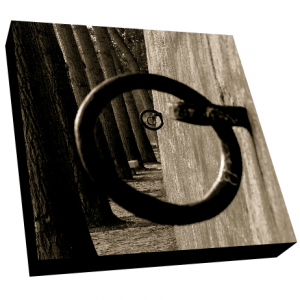 Mooring Rings Canvas 3D