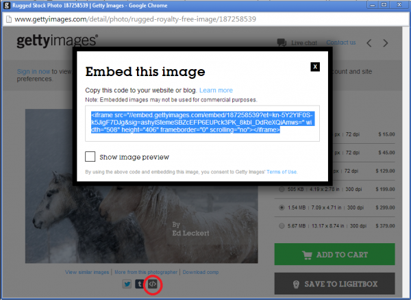 Example of Getty Images Embed Feature