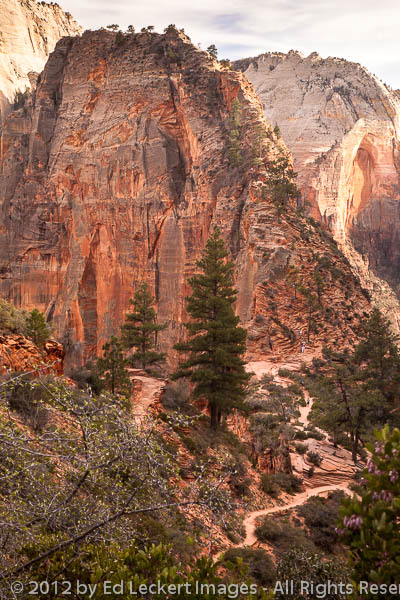 Trail to Angels Landing, Zion National Park, Utah