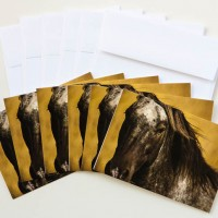 """Watchful"" Note Cards"