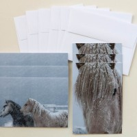 """Icelandic Horses in Snowstorm"" Note Cards"
