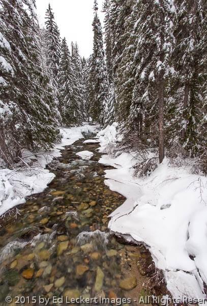 Early Winters Creek, near Mazama, Washington