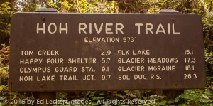 Hoh River Trail Sign, Olympic National Park, Washington