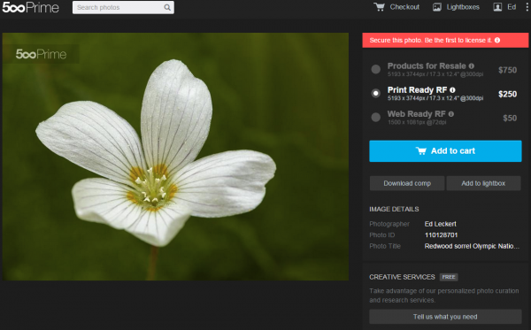 Redwood Sorrel Licensing Page on 500px