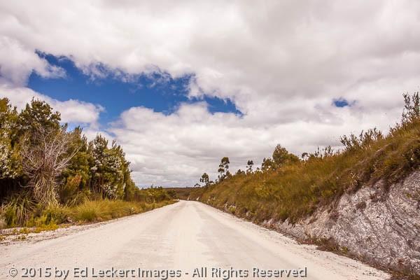 The Tarkine Expressway, Tasmania, Australia