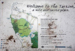 Welcome to the Tarkine, Tasmania, Australia