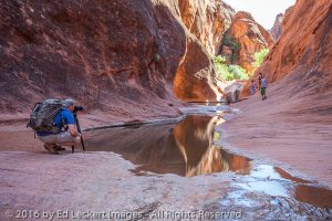 Jeremy Waits for the Shot, Red Cliffs National Conservation Area