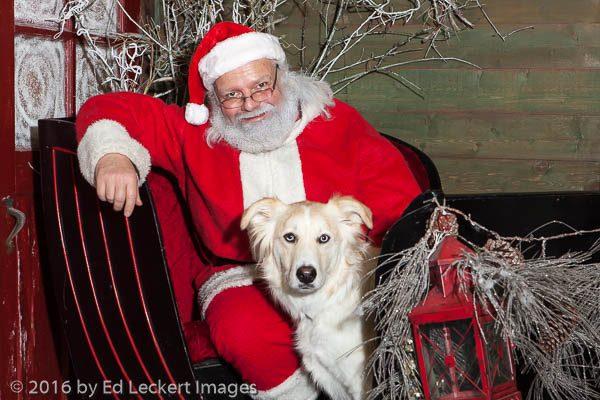 Santa with Dog at Timber Creek