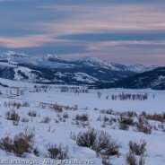 Dusk in Lamar Valley, Yellowstone National Park, Wyoming