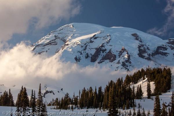 Evening at Paradise, Mount Rainier National Park, Washington