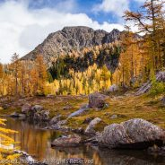 Larch Lake Tarn, Alpine Lakes Wilderness, Washington