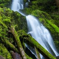 Mineral Creek Falls, Olympic National Park, Washington