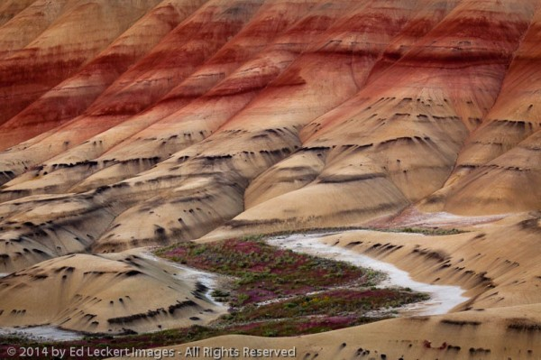 River of Color, John Day Fossil Beds National Monument, Oregon