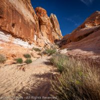 The White Dome Trail, Valley of Fire State Park, Nevada