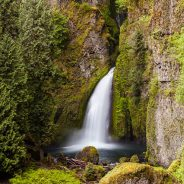 Wahclella Falls and Footbridge, Historic Columbia River Highway, Oregon