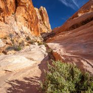White Dome Trail, Valley of Fire State Park, Nevada