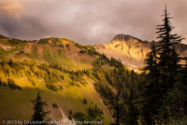 Cispus River Valley at Sunset, Goat Rocks Wilderness, Washington