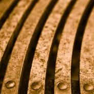 Close-up of Park Bench, Seattle, Washington