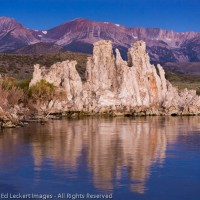 What Happens in Mono Lake…